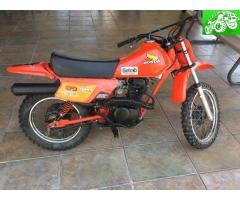 1984 Honda xr80