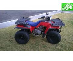 Honda fourtrax 250