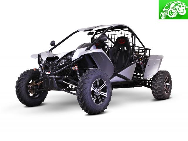 Renli JMC RL1500 Raptor Buggy-Sport SXS-UTV Granbury - Off Road Classifieds | Parts & Vehicles