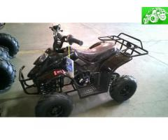 Brand new 110cc Kids Quad  Kids ATV